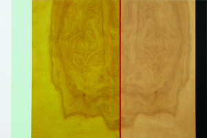 Anziana, 2006, oil enamel, varnish, and sand on birch panel, 2006, 24 x 36 in