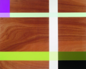 Bougainvillaea Ascension, 2002, oil enamel, varnish and sand on mahogany panel, 48 x 60 in