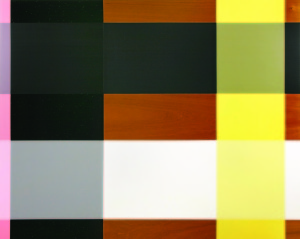 Ne Plus Ultra, 2002, oil enamel and varnish on mahogany panel, 48 x 60 in. jpg
